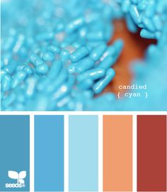 I love these colors together. Probably going to use them to decorate one of the rooms in my house soon :-)