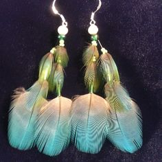 Coco feathers, blue and gold macaw.