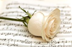 Poems About Death: Great list of funeral songs appropriate for any memorial service ceremony. Song titles listed by genres. Funeral Songs For Mom, Funeral Music, Funeral Poems, Songs To Sing, Music Songs, Music Stuff, Poem About Death, Funeral Ceremony, Funeral Planning