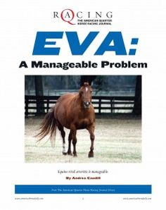 Although EVA is rarely lethal to horses, it can play havoc with your breeding program, as its greatest danger lies in mares aborting their pregnancies. Find out how you can protect your mares and breeding program through AQHA's EVA: A Manageable Problem report.