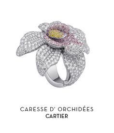 Anillo - Caresse d'Orchidées - Cartier - El Palacio de Hierro