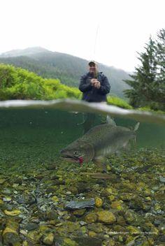 Global Explorers Blog: Alaska Photo Blog: Flyfishing in Alaska