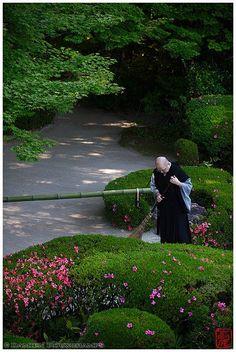 Monk tending zen garden, Shisen-do temple, Kyoto