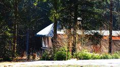 Wildniscamp am Falkenstein NBW
