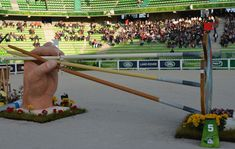 WEG showjumping: fence designs celebrate the best of Normandy [PICS] - Horse & Hound