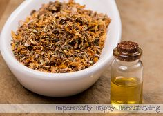 How to Make and Use Calendula Oil