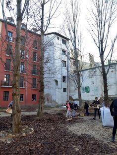 Adoquines y Losetas.: Huerto urbano