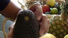 Wenn Du bei einer Avocado oben unter den Nupsi schaust, kannst Du sofort erkennen, wie reif sie ist:
