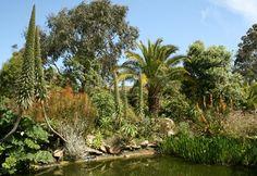 Jardin exotique & botanique à Roscoff, Finistere, Brittany