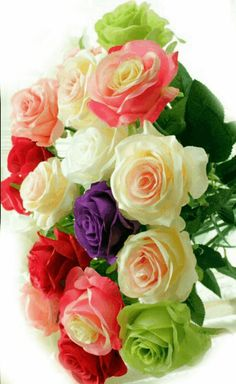 Flowers are God 's Way of Smiling Beautiful Gif, Beautiful Roses, Love Rose, Love Flowers, Morning Rose, Happy Birthday Flower, Rose Pictures, Flower Wallpaper, Pink Roses