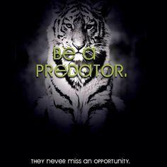 never miss an opportunity Seductive Words, Get What You Want, Body And Soul, Sweet Words, Positive Words, Predator, Shark, Motivation, Life
