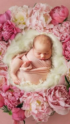 Monthly Baby Photos, Newborn Baby Photos, Baby Poses, Baby Girl Newborn, Newborn Poses, Newborn Shoot, Newborn Pictures, 6 Month Baby Picture Ideas, Baby Girl Pictures