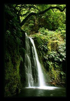 Salto de Prego, Sao Miguel, Azores