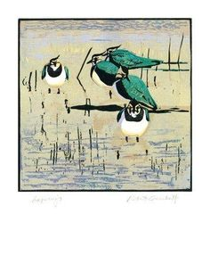 'Lapwings' by Robert Greenhalf (rga1)