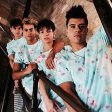 Image result for pic of the dobre brothers
