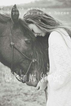 Love horses<3