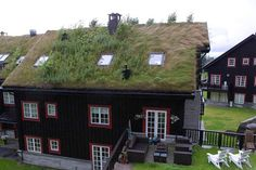 BioOrbis: Telhados Verdes