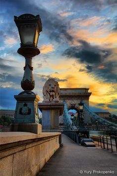 Lion Sculpture on The Szechenyi Chain Bridge, Budapest Hungary © --YurY--