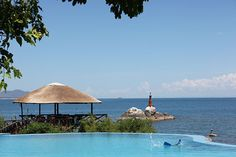 Blue Zebra in Salima Archipelago, Lodges, Places Ive Been, Places To Visit, Wildlife, Patio, World, Outdoor Decor, Travel