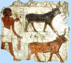 farmers in Ancient Egypt