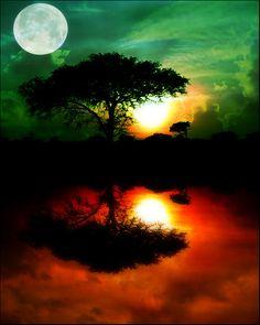 WHOA - the Moon & the stars & the Sun