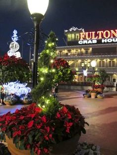 Downtown Disney - Holidays -