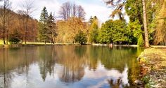 Colorful park and lake with reflection in autumn. Travel Deals, Ponds, Lakes, Golf Courses, Reflection, Royalty Free Stock Photos, Country Roads, Colorful, Autumn