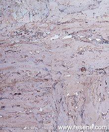 Fresh wallpaper inspiration - new and inspiring 2019 View Wallpaper, Latest Wallpapers, Inspirational Wallpapers, Macau, Natural Materials, Wall Decor, Fresh, Decorating, Collection