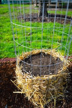 How to build a vertical onion tower! Vertical Gardening. Container gardening. Growing Onions.