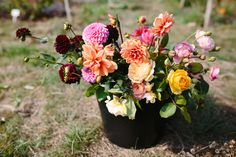 Bucket of garden roses and dahlias // Bride and Bloom // Paper Angel Photography // The Natural Wedding Company Paper Angel, Wedding Company, Flower Shops, Garden Roses, Florists, Dahlias, Summer Flowers, Wedding Season, Summer Wedding