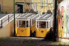 Carlos Almeida  Estremadura, Portugal     http://portugalmelhordestino.pt/fotos_concurso/c448d5714ef326d9e0b573115aa76988.jpg