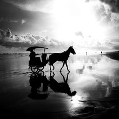 Ooh! Horses, beach and beautiful photography....AAaaaahhh!!