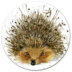hedgehog T-shirt graphics, hedgehog illustration with splash watercolor textured background. illustration watercolor hedgehog fashion print, poster for textiles, fashion design Hedgehog Art, Hedgehog Drawing, Cute Hedgehog, Hedgehog Illustration, Watercolor Illustration, Watercolor Paintings, Watercolors, Oil Paintings, Animal Drawings