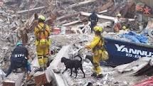 rescue heroes 9/11 - Google Search