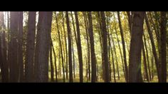 In your nature (Molinos del Río) on Vimeo