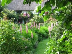 Free to be Scotty | pagewoman: Cottage Garden via brokenpenwriter