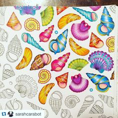 """Wow!!!! By @sarahcarabot ❤️ #Repost @sarahcarabot with @repostapp. ・・・ Progress  #johannabasford #lostocean #seashells #milanpencils"""