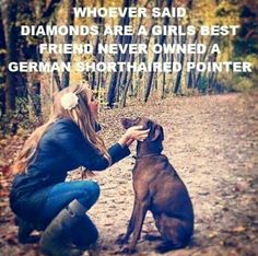 So true #germanshorthairpointer #gsp