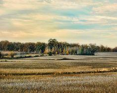 Autumn Fields - Landscape - Fine Art Prints