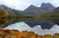 Cradle Mountain Reflection - prints and downloads available