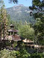 Welcome to Almay Ranch Resort Coffee Creek, CA Trinity Center Trinity County 6 bedroom rental Trinity Alps, California Travel, Wilderness, Ranch, Heaven, Camping, Goals, Dreams, Sun