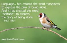 #Solitudeisbeautiful #KevinWestrich