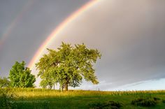 Under the rainbow by rudimajerle #nature #mothernature #travel #traveling #vacation #visiting #trip #holiday #tourism #tourist #photooftheday #amazing #picoftheday