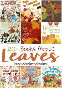I am excited about pumpkin-flavored drinks and snacks, long sleeves, and falling leaves. If you and your preschoolers are getting excited about fall, fill their book basket with this fun collection of leaf-themed books. | homeschoolpreschool.net