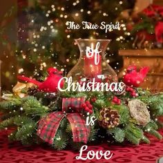 merry christmas wishes & merry christmas - merry christmas quotes - merry christmas wishes - merry christmas wallpaper - merry christmas calligraphy - merry christmas signs - merry christmas quotes wishing you a - merry christmas gif Animated Christmas Tree, Merry Christmas Message, Merry Christmas Poster, Merry Christmas Pictures, Merry Christmas Wallpaper, Christmas Scenery, Merry Christmas Greetings Quotes, Christmas Wishes For Family, Christmas Love Messages