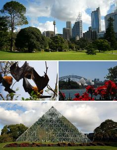 Royal Botanic Gardens, Sydney, Australia. View both downtown Sydney and the infamous Sydney Opera House from the Royal Botanic Gardens, located on the site of Australia's first ever farm, which was established in 1788. Centuries of improvements to the soil have enabled a gorgeous array of plants to flourish, including many that grow inside the Pyramid Glasshouse.the bats killed dozens of trees and were eventually driven out.