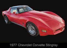 1977 Chevy Corvette Stingray by Chris Flees