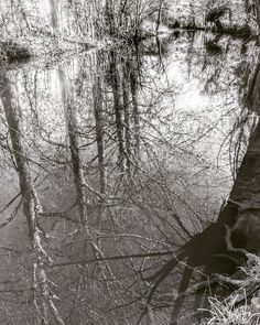 #malmesbury #dogwalktherapy #reflections #river #iphone5s #snapseed