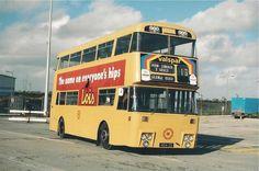 Double Decker Bus, Bus Coach, Busse, Coaches, Dublin, Trains, Transportation, Ireland, Irish