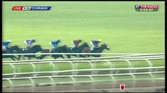 Race Replay: Palmerstown House Estate Irish St Leger, 14-09-14 #BrownPanther